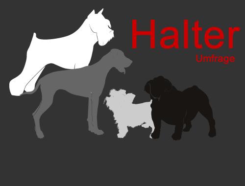 """Umfrage """"Hund und Halter"""""""